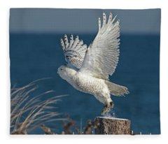 Moving On Fleece Blanket
