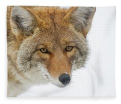 Mr. Coyote Fleece Blanket
