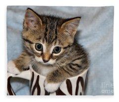Mug Kitten Fleece Blanket
