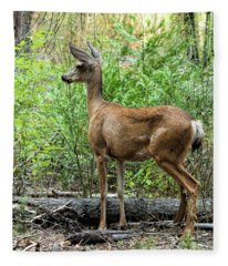 Mule Deer Doe - Yosemite Fleece Blanket