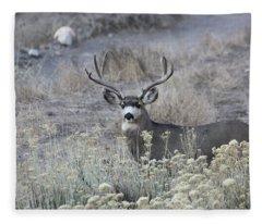 Muledeerbuck5 Fleece Blanket