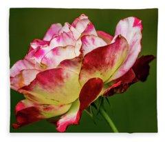 Multi-colored Rose Fleece Blanket
