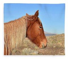 Mustang Mare Fleece Blanket