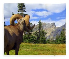 My Kingdom Fleece Blanket