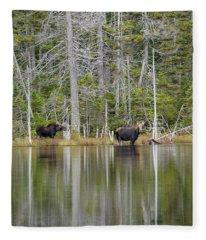Nancy Pond - White Mountains New Hampshire Usa Fleece Blanket