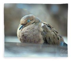 Nap Fleece Blanket
