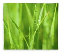Native Prairie Grasses Fleece Blanket