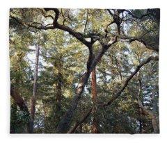 Natural Upward Flow - Descanso Gardens Fleece Blanket
