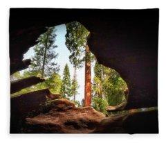 Natural Window Fleece Blanket