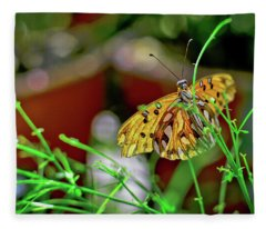 Nature - Butterfly And Plants Fleece Blanket