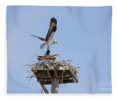 Nesting Osprey In New England Fleece Blanket