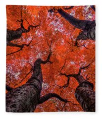 Nishinomiya Japanese Garden - Autumn Trees Fleece Blanket
