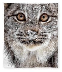 No Mouse This Time Fleece Blanket