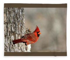 Northern Cardinal On Tree Fleece Blanket