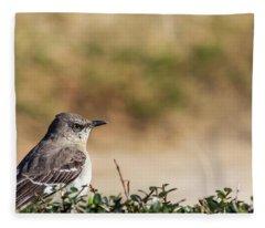 Northern Mockingbird Sitting On Top Of A Hedge Fleece Blanket