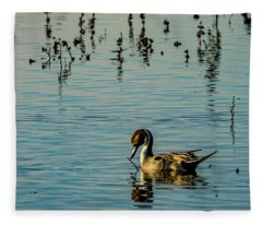Northern Pintail At The Wetlands Fleece Blanket