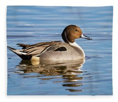 Northern Pintail Duck Fleece Blanket
