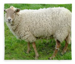 Unshaven Fleece Blanket