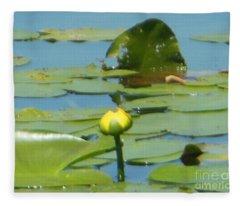 Nuphar Lutea Yellow Pond Fleece Blanket