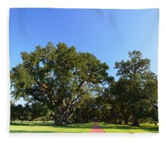 Oak Alley Plantation Panoramic Fleece Blanket