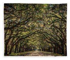 Oak Tree Tunnel Fleece Blanket