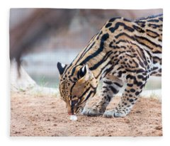 Ocelot And Egg Fleece Blanket
