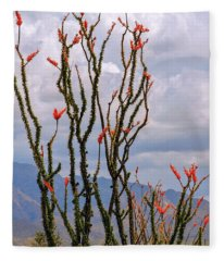 Ocotillo Blooming Under Cloudy Skies Fleece Blanket