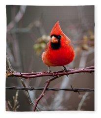 Of Barbs And Thorns Fleece Blanket