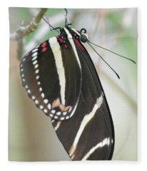 Official Butterfly Of Florida Fleece Blanket