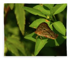 Offset Image Of A Brown Butterfly Fleece Blanket
