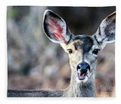 Oh, Deer Fleece Blanket