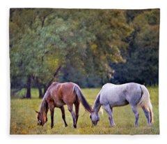 Ok Horse Ranch_2a Fleece Blanket
