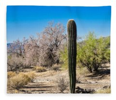 On The Ironwood Trail Fleece Blanket