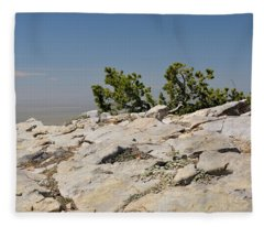 On Top Of Sandia Mountain Fleece Blanket