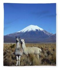 Ooooh Look Tourists Time To Smile Fleece Blanket
