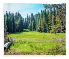 Open Meadow- Fleece Blanket