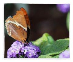 Orange And Brown Butterfly On Purple Fleece Blanket
