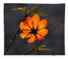 Orange Cosmo Fleece Blanket
