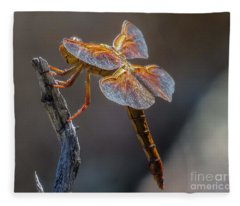 Dragonfly 2 Fleece Blanket