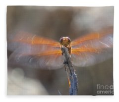 Dragonfly 4 Fleece Blanket