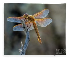 Dragonfly 6 Fleece Blanket