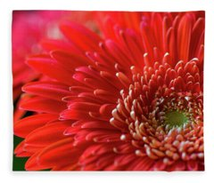 Fleece Blanket featuring the photograph Orange Gerbera by Clare Bambers