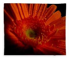 Orange Gerbera Fleece Blanket