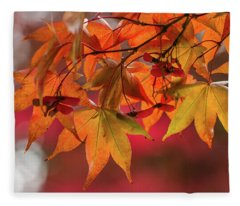 Fleece Blanket featuring the photograph Orange Maple Leaves by Clare Bambers