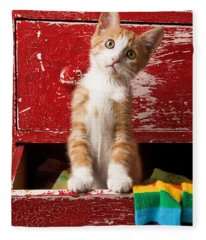 Orange Tabby Kitten In Red Drawer  Fleece Blanket