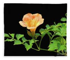 Orange Trumpet Flower Fleece Blanket
