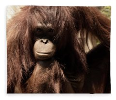 Orangutan Pose Fleece Blanket