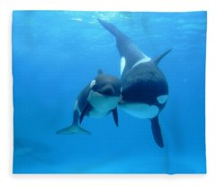 Orca Orcinus Orca Mother And Newborn Fleece Blanket