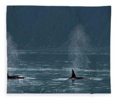 Orcas In Resurrection Bay Fleece Blanket