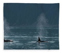 Orcas In Resurrection Bay Fleece Blanket